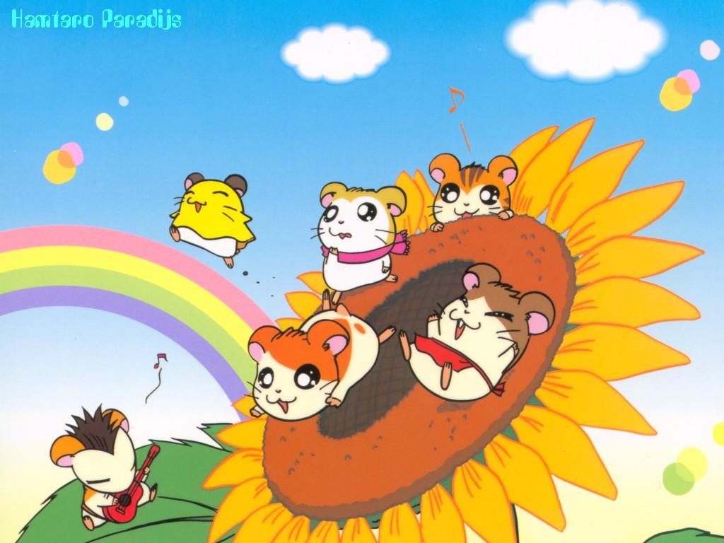 wallpaper  hamtaro achtergrond animaatjes 31