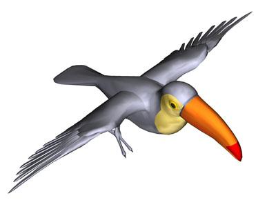 Pelikanen vogel bilder