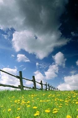 Landschaft und natur wallpapers