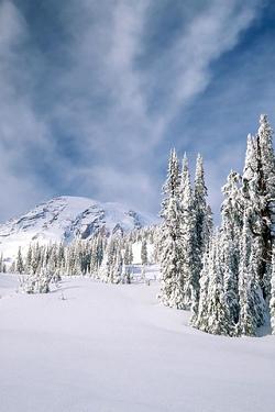 Schnee wallpapers