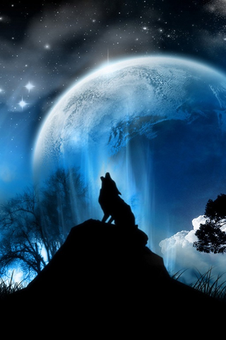 Tiere wallpapers
