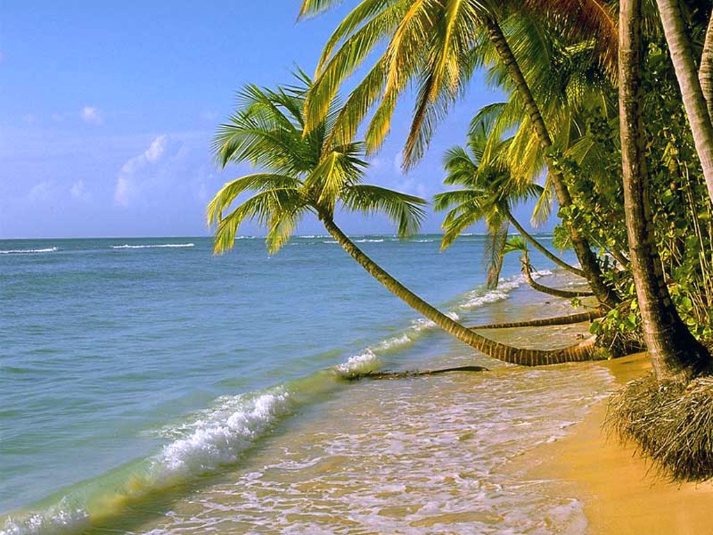 See und strand wallpapers